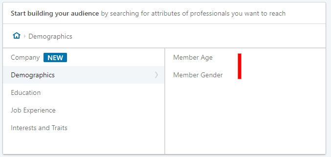 Linkedin advertising - demographics setting